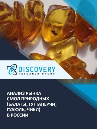 Маркетинговое исследование - Анализ рынка смол природных (балаты, гуттаперчи, гуаюль, чикл) в России