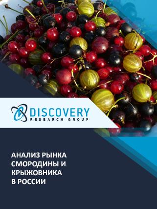 Анализ рынка смородины и крыжовника в России (с базой импорта-экспорта)