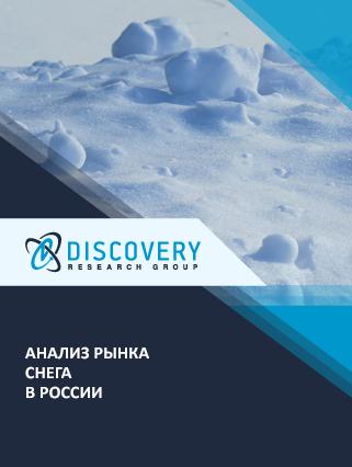 Маркетинговое исследование - Анализ рынка снега в России