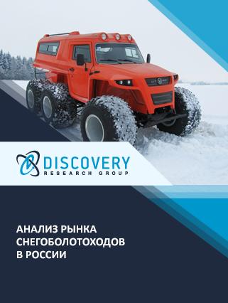 Маркетинговое исследование - Анализ рынка снегоболотоходов в России