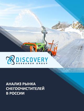 Маркетинговое исследование - Анализ рынка снегоочистителей в России