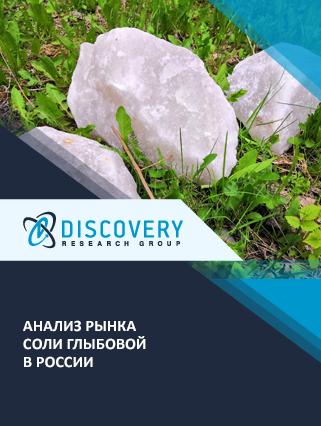 Анализ рынка соли глыбовой в России