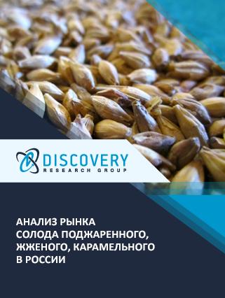 Маркетинговое исследование - Анализ рынка солода поджаренного, жженого, карамельного в России