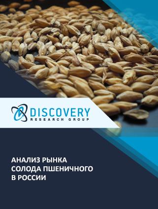 Маркетинговое исследование - Анализ рынка солода пшеничного в России