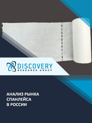 Маркетинговое исследование - Анализ рынка спанлейса в России