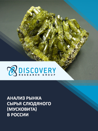 Маркетинговое исследование - Анализ рынка сырья слюдяного (мусковита) в России