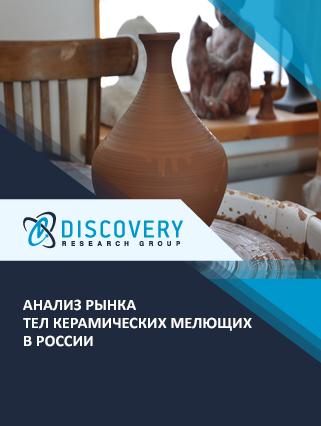 Маркетинговое исследование - Анализ рынка тел керамических мелющих в России