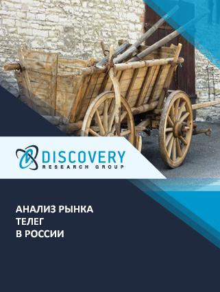 Маркетинговое исследование - Анализ рынка телег в России