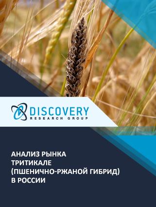 Маркетинговое исследование - Анализ рынка тритикале (пшенично-ржаной гибрид) в России
