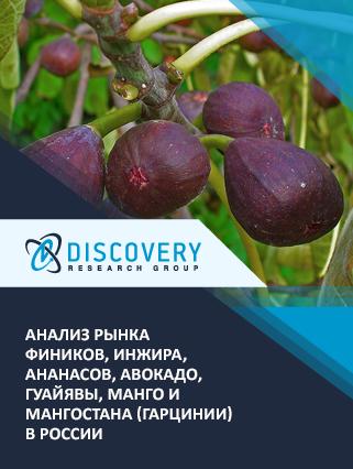 Маркетинговое исследование - Анализ рынка фиников, инжира, ананасов, авокадо, гуайявы, манго и мангостана (гарцинии) в России