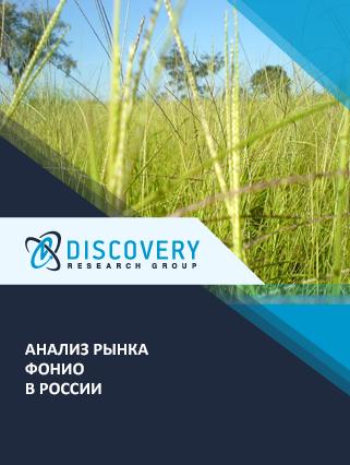 Маркетинговое исследование - Анализ рынка фонио в России