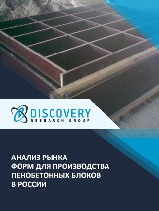 Маркетинговое исследование - Анализ рынка форм для производства пенобетонных блоков в России