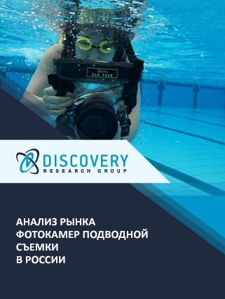 Маркетинговое исследование - Анализ рынка фотокамер подводной съемки в России