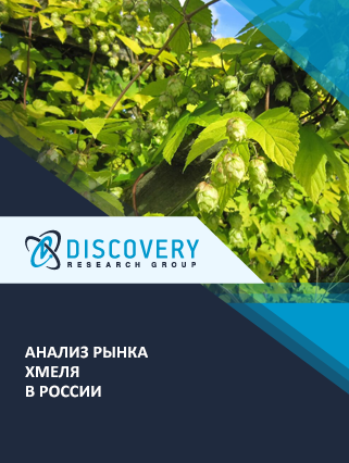 Маркетинговое исследование - Анализ рынка хмеля в России