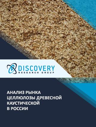 Маркетинговое исследование - Анализ рынка целлюлозы древесной каустической в России