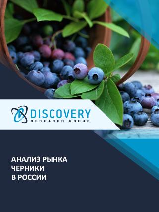 Анализ рынка черники в России