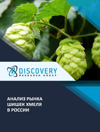 Маркетинговое исследование - Анализ рынка шишек хмеля в России