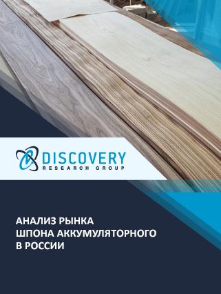 Маркетинговое исследование - Анализ рынка шпона аккумуляторного в России