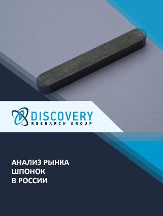 Маркетинговое исследование - Анализ рынка шпонок в России