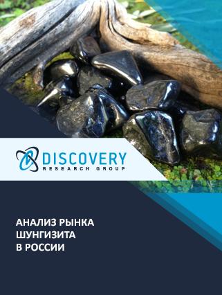 Маркетинговое исследование - Анализ рынка шунгизита в России