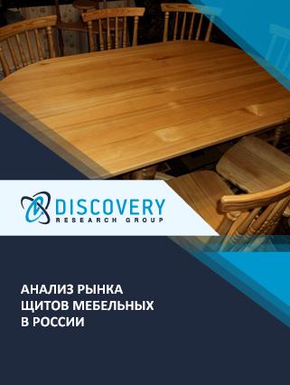Маркетинговое исследование - Анализ рынка щитов мебельных в России