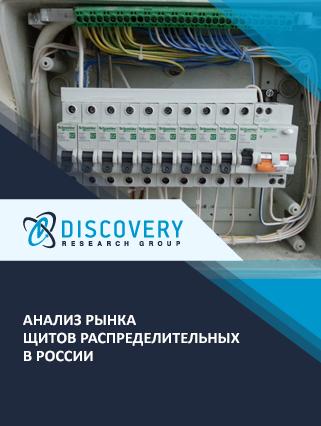Маркетинговое исследование - Анализ рынка щитов распределительных в России