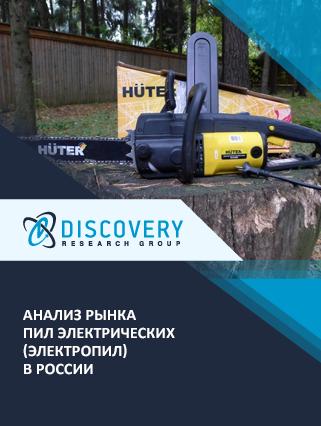 Маркетинговое исследование - Анализ рынка пил электрических (электропил) в России