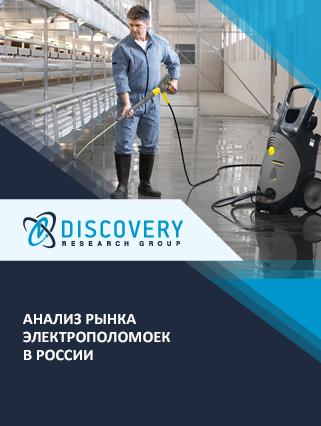 Маркетинговое исследование - Анализ рынка электрополомоек в России