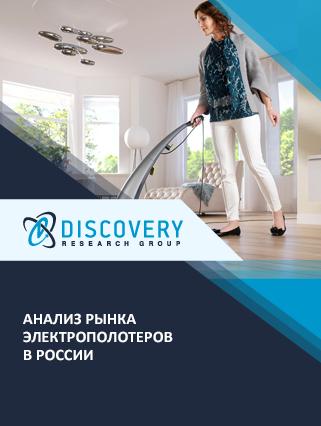 Маркетинговое исследование - Анализ рынка электрополотеров в России