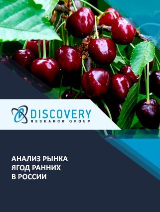 Маркетинговое исследование - Анализ рынка ягод ранних в России