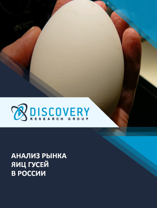 Маркетинговое исследование - Анализ рынка яиц гусей в России