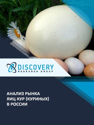 Маркетинговое исследование - Анализ рынка яиц кур (куриных) в России