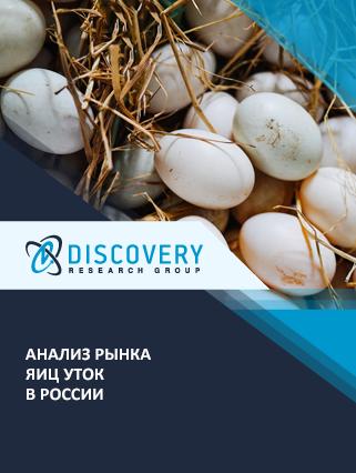 Маркетинговое исследование - Анализ рынка яиц уток в России