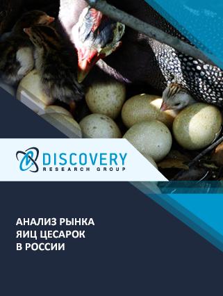 Маркетинговое исследование - Анализ рынка яиц цесарок в России