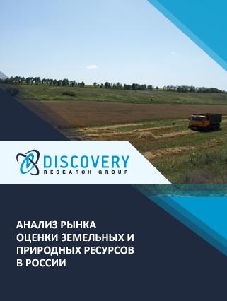 Маркетинговое исследование - Анализ рынка оценки земельных и природных ресурсов в России