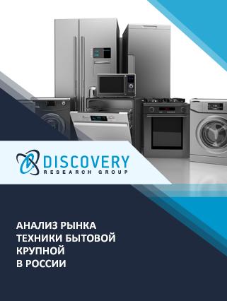 Анализ рынка техники бытовой крупной в России