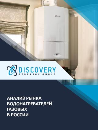 Маркетинговое исследование - Анализ рынка водонагревателей газовых в России