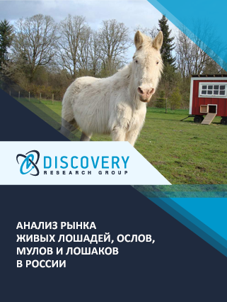 Маркетинговое исследование - Анализ рынка живых лошадей, ослов, мулов и лошаков в России