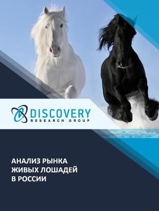 Маркетинговое исследование - Анализ рынка живых лошадей в России