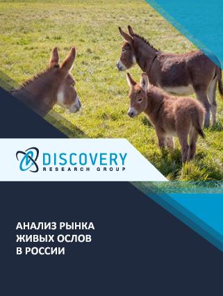 Маркетинговое исследование - Анализ рынка живых ослов в России