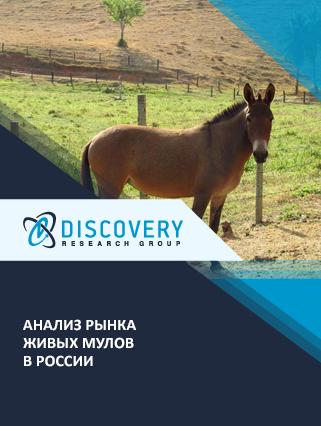 Маркетинговое исследование - Анализ рынка живых мулов в России