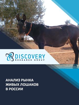 Маркетинговое исследование - Анализ рынка живых лошаков в России
