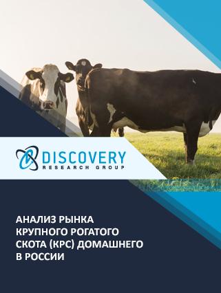 Маркетинговое исследование - Анализ рынка крупного рогатого скота (КРС) домашнего в России