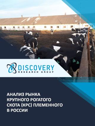 Маркетинговое исследование - Анализ рынка крупного рогатого скота (КРС) племенного в России