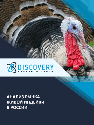 Маркетинговое исследование - Анализ рынка живой индейки в России