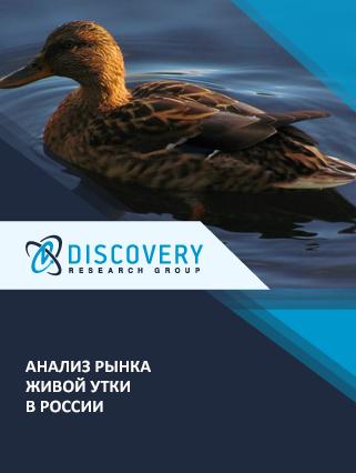 Маркетинговое исследование - Анализ рынка живой утки в России