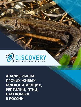 Маркетинговое исследование - Анализ рынка прочих живых млекопитающих, рептилий, птиц, насекомых в России