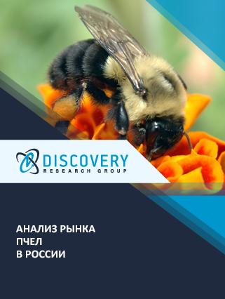 Маркетинговое исследование - Анализ рынка пчел в России
