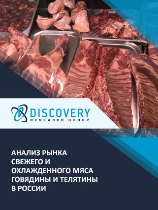 Анализ рынка свежего и охлажденного мяса говядины и телятины в России