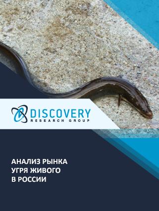Маркетинговое исследование - Анализ рынка угря живого в России